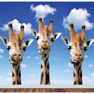 Детски фототапет за стена 'Жирафи'