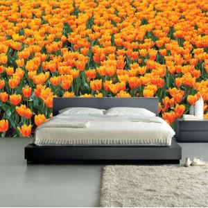 Фототапет за стена 'Оранжево изобилие'